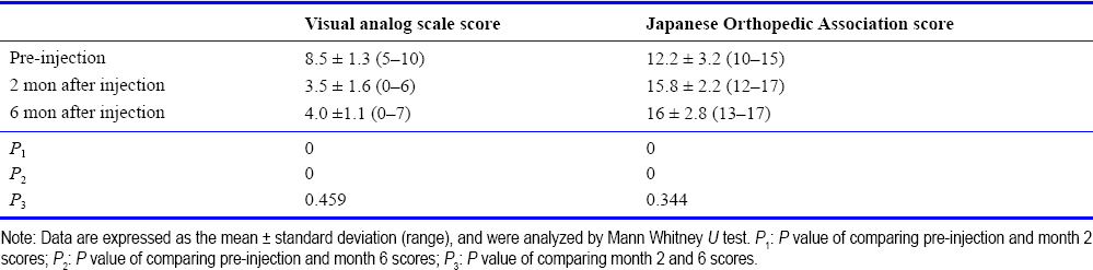 Table 1: Visual analog scale pain scores and Japanese Orthopedic Association scores of neck pain patients withcervical paravertebral O<sub>3</sub>/O<sub>2</sub> injection